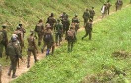 RDC : cinq civils tués par des rebelles au 13ème jour d'offensives militaires